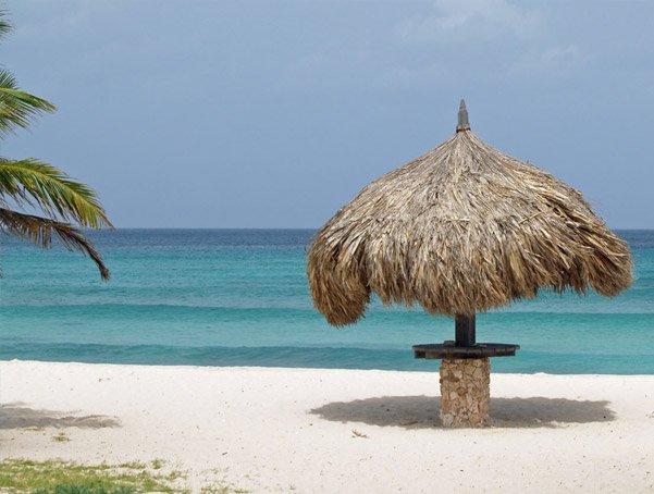 Aruba's palapa wars