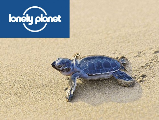 Lonely Planet Reveals Sea Turtle Protectors